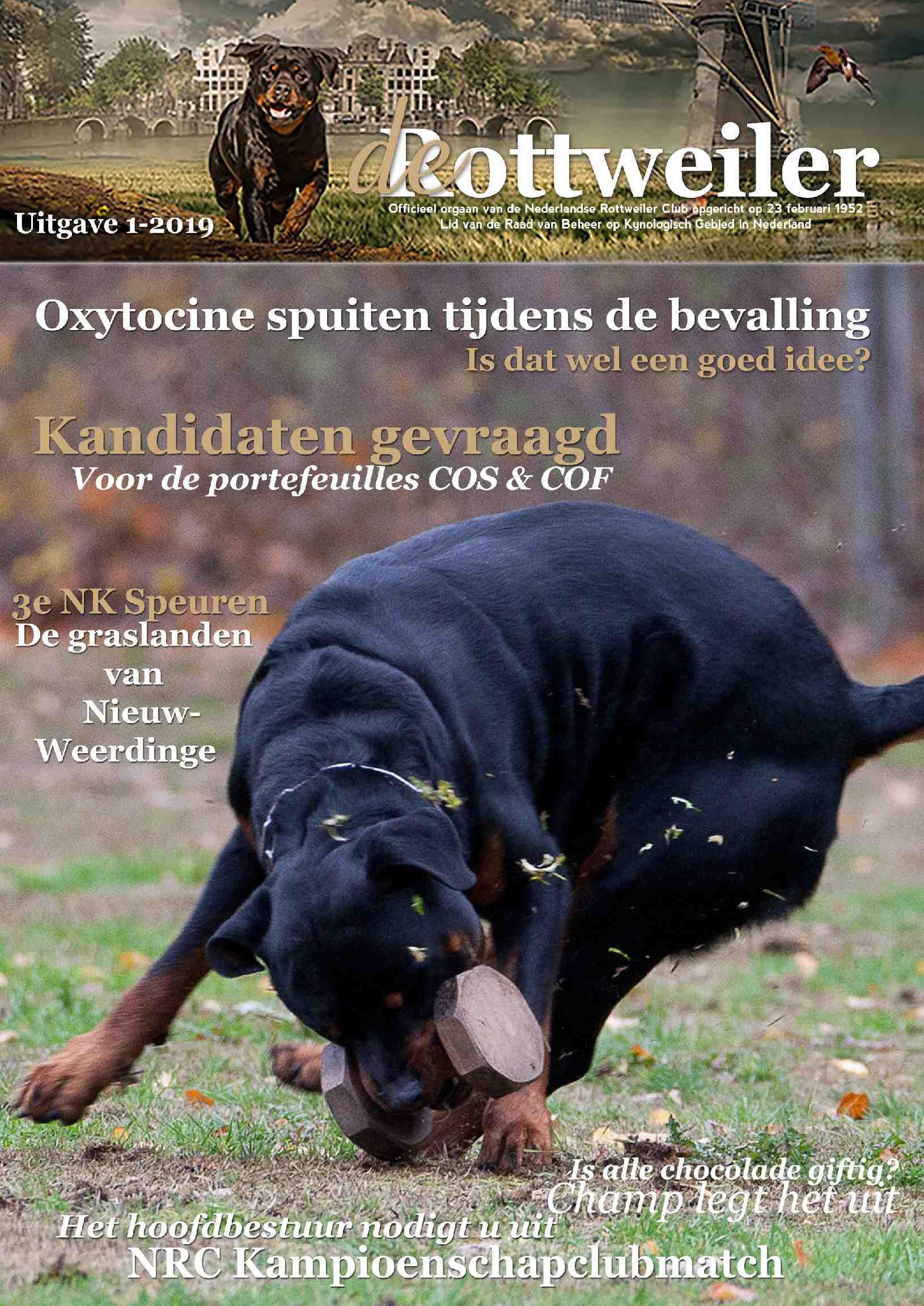 Cover editie februari 2019