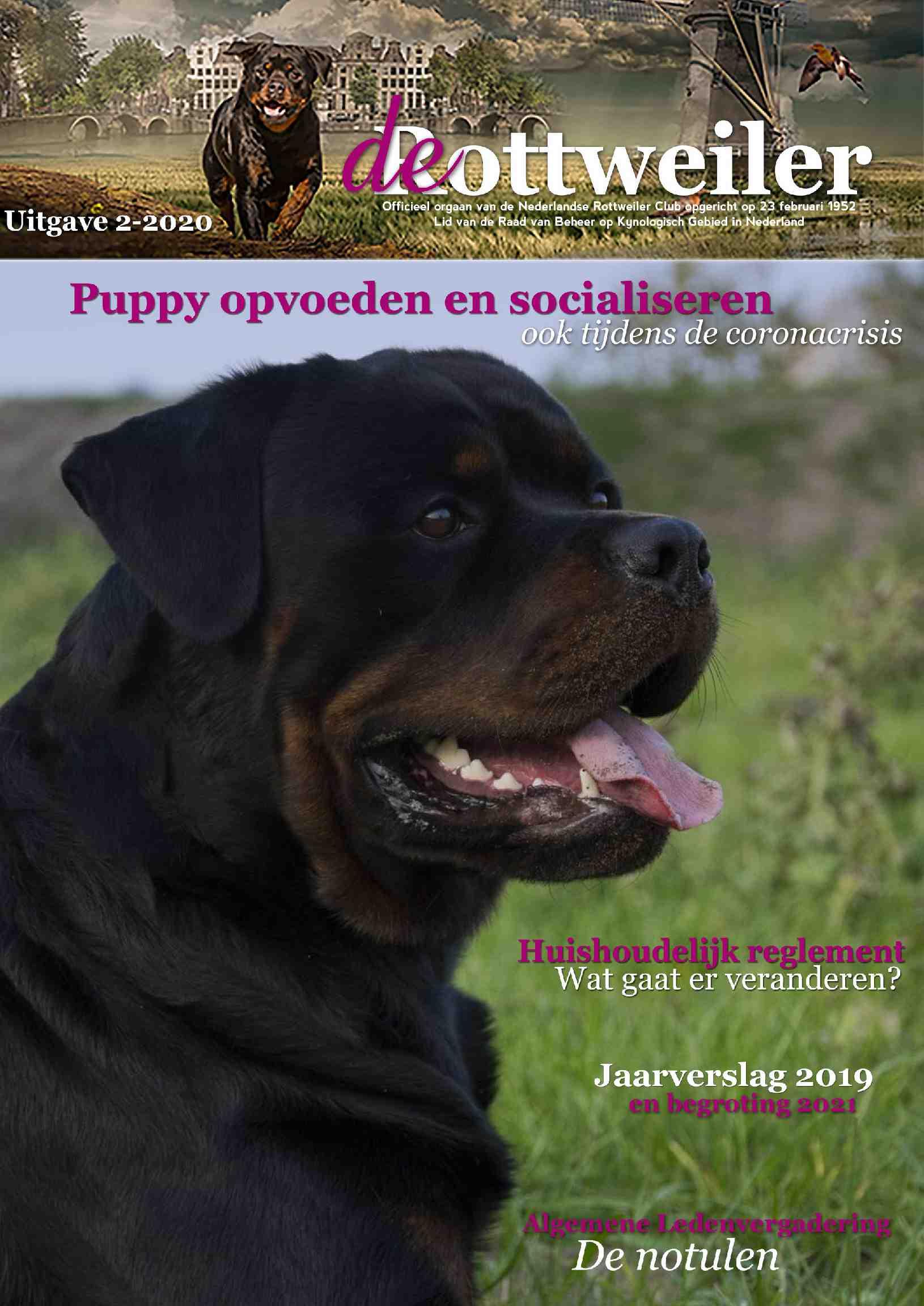 Cover editie mei 2020
