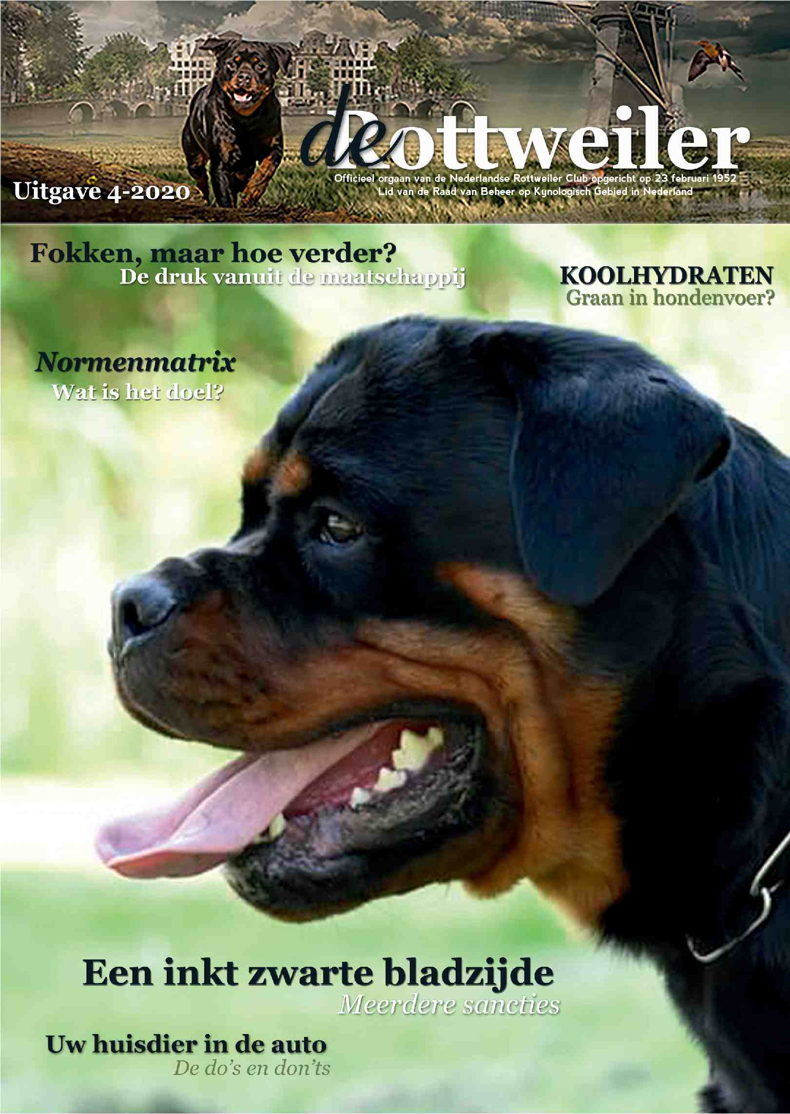 Cover editie november 2020