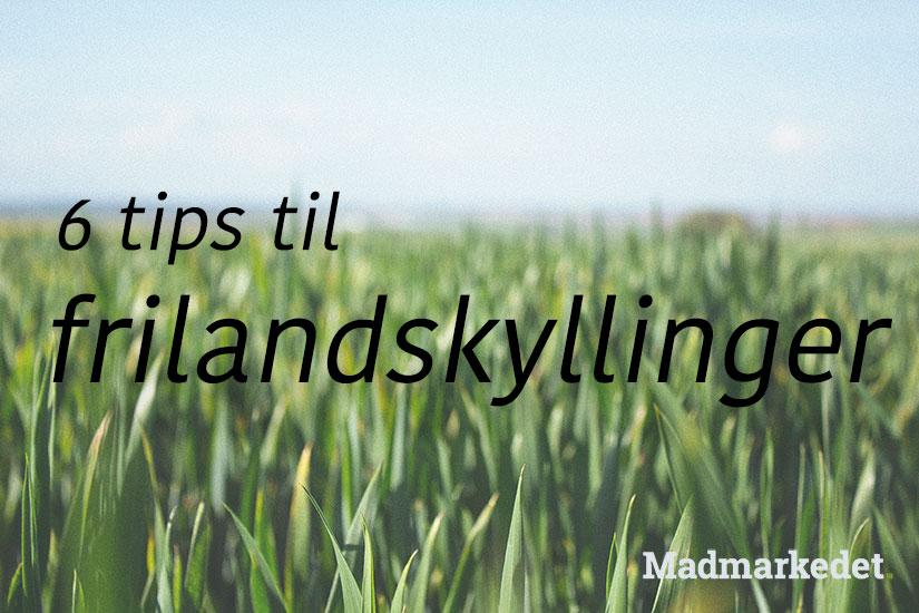 6 tips til frilandskyllinger fra madmarkedet.dk
