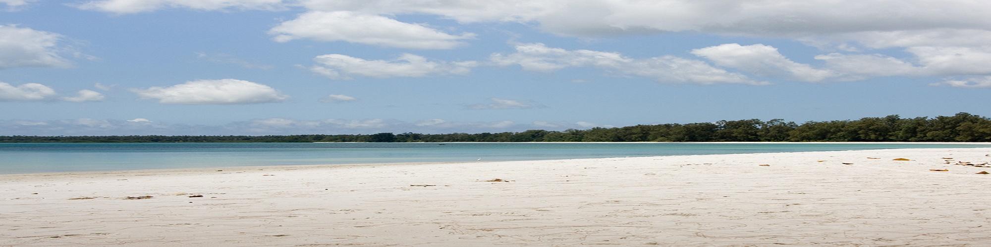 Pemba Island Zanzibar TANZANIA