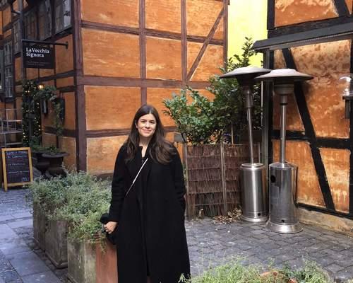 33 årig svensk pige søger en 1-2 værelseslejlighed i København