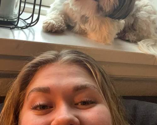 21-årig pige + lille hund søger 2-3 værelses lejlighed