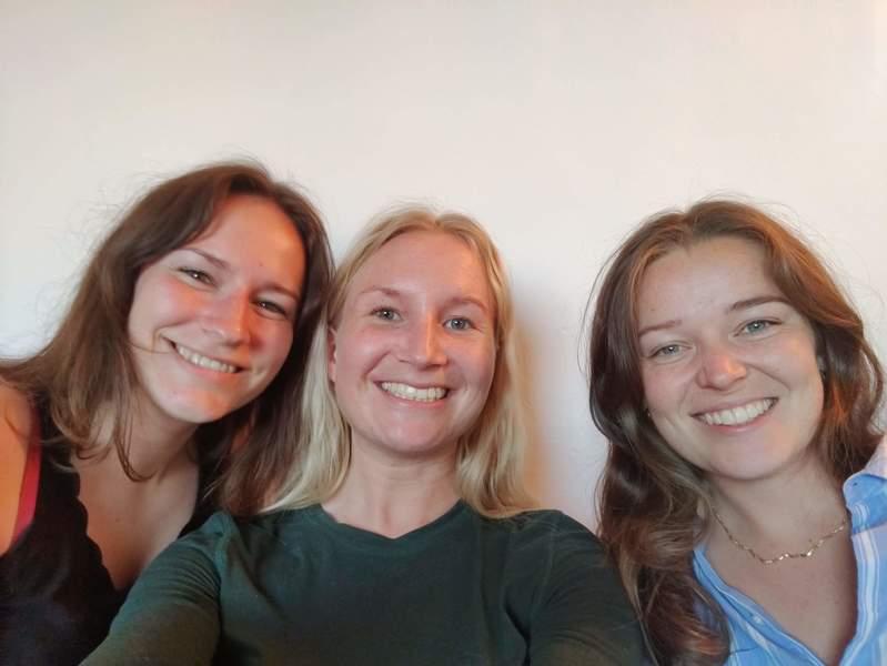3 veninder søger en fælles 4-værelses lejlighed