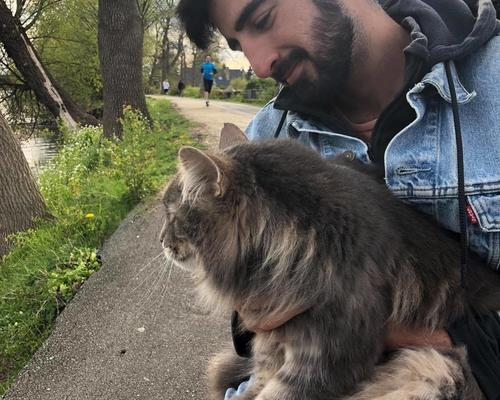 Quiet and nice couple seeking small apartment in stockholm