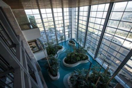 Hadassah Medical Center