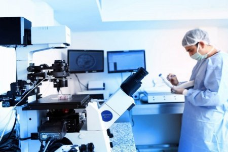 Dunya IVF Clinic