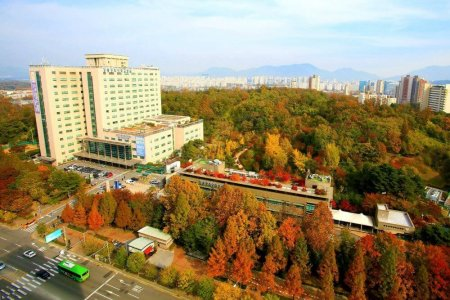 Check best prices for Lung sarcoma treatment at Kyung Hee University Hospital at Gangdong (KUIMS)