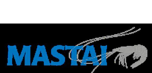 Mastai-logo-sunset-party