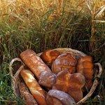 Bäckerei Nussbaumer AG