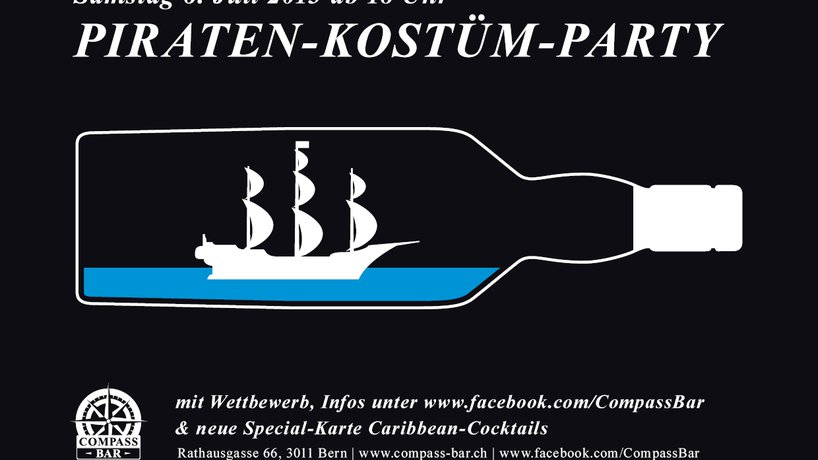 Flyer Piraten-Party