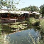 Fischerei-Park