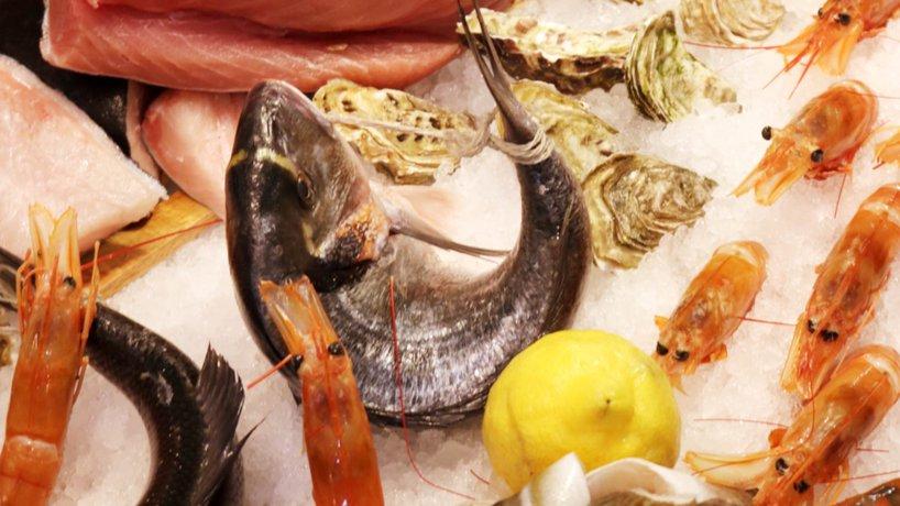 Frischfisch auf Eis