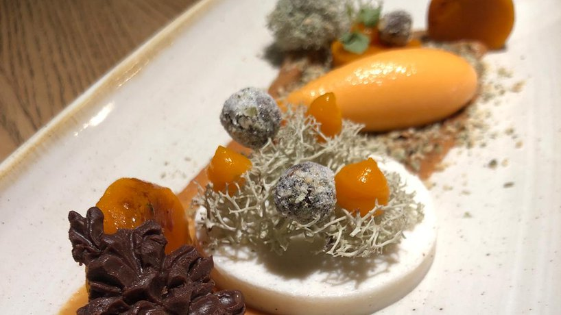 Kürbis |Moos |Schokolade