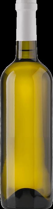 Bottle wine white