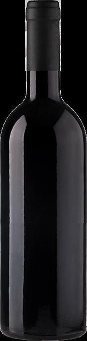 Bottle wine black