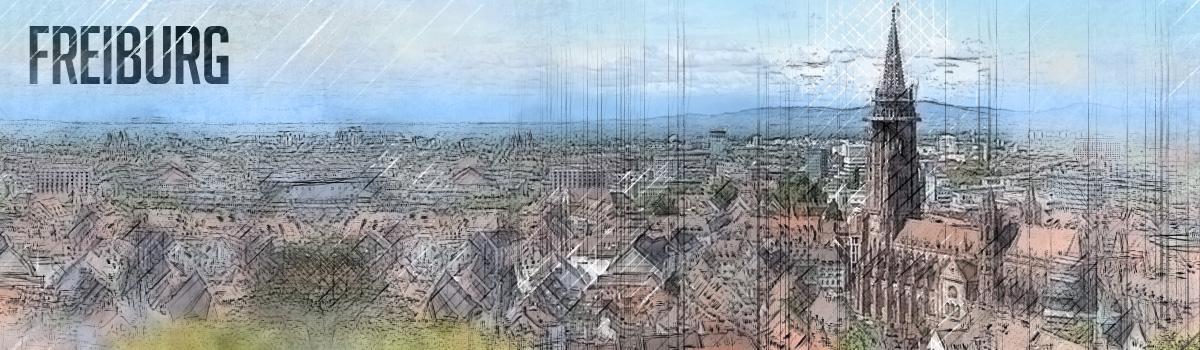 Freiburg im Breisgau Brennholz finden
