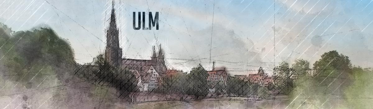 Brennholz kaufen in Ulm