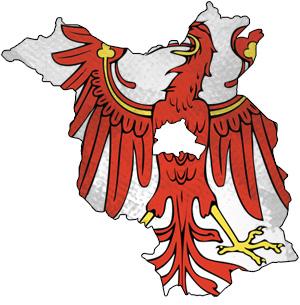 Briketts zum Heizen aus Brandenburg