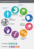 Das angeborene Immunsystem