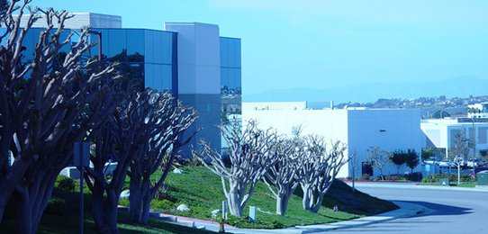 biosyn Corporation Carlsbad