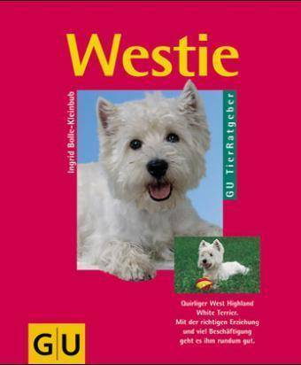 Westie - Quirliger West Highland White Terrier