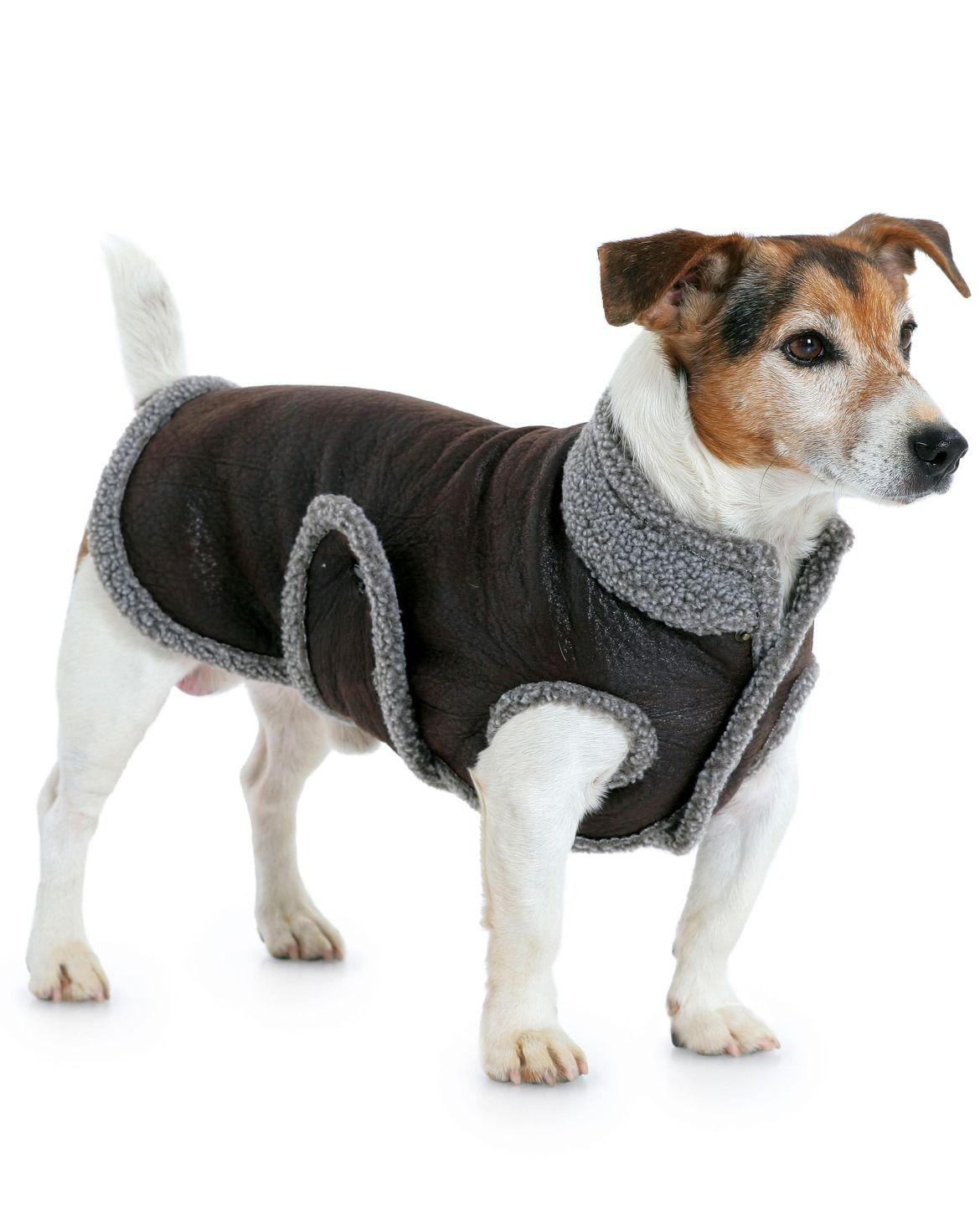 Perfect Hund Shirt Schnittmuster Photo - Decke Stricken Muster ...