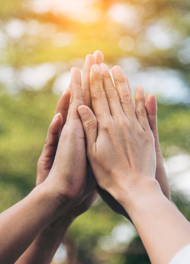 Zusammenhalt, Solidarität und gegenseitige Unterstützun