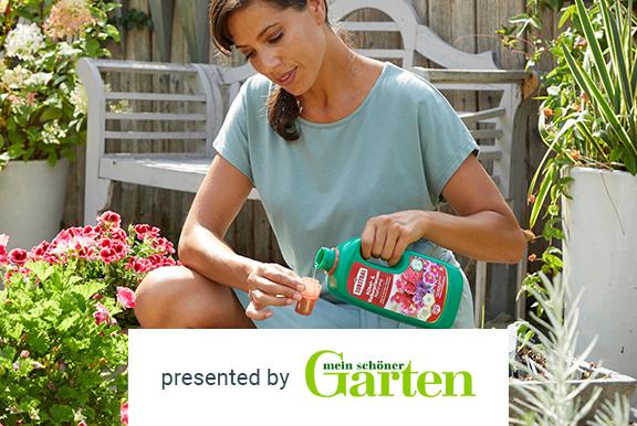 SUBSTRAL® Kübel- und Balkonpflanzen Nahrung kostenlos testen