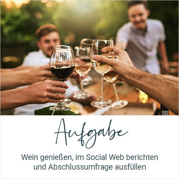Aufgabe: Wein geniessen, im Web berichten und Abschlussumfrage ausfüllenn