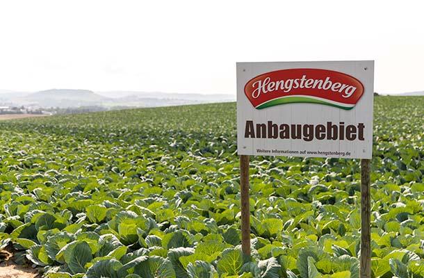 Hengstenberg Anbaugebiet