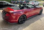 Ford Mustang Cabrio 5.0 V8 GT 50 Years Anniversary