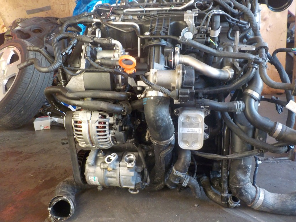 Motor CAYE Volkswagen Caddy 3 1.6 TDI 16V compleet