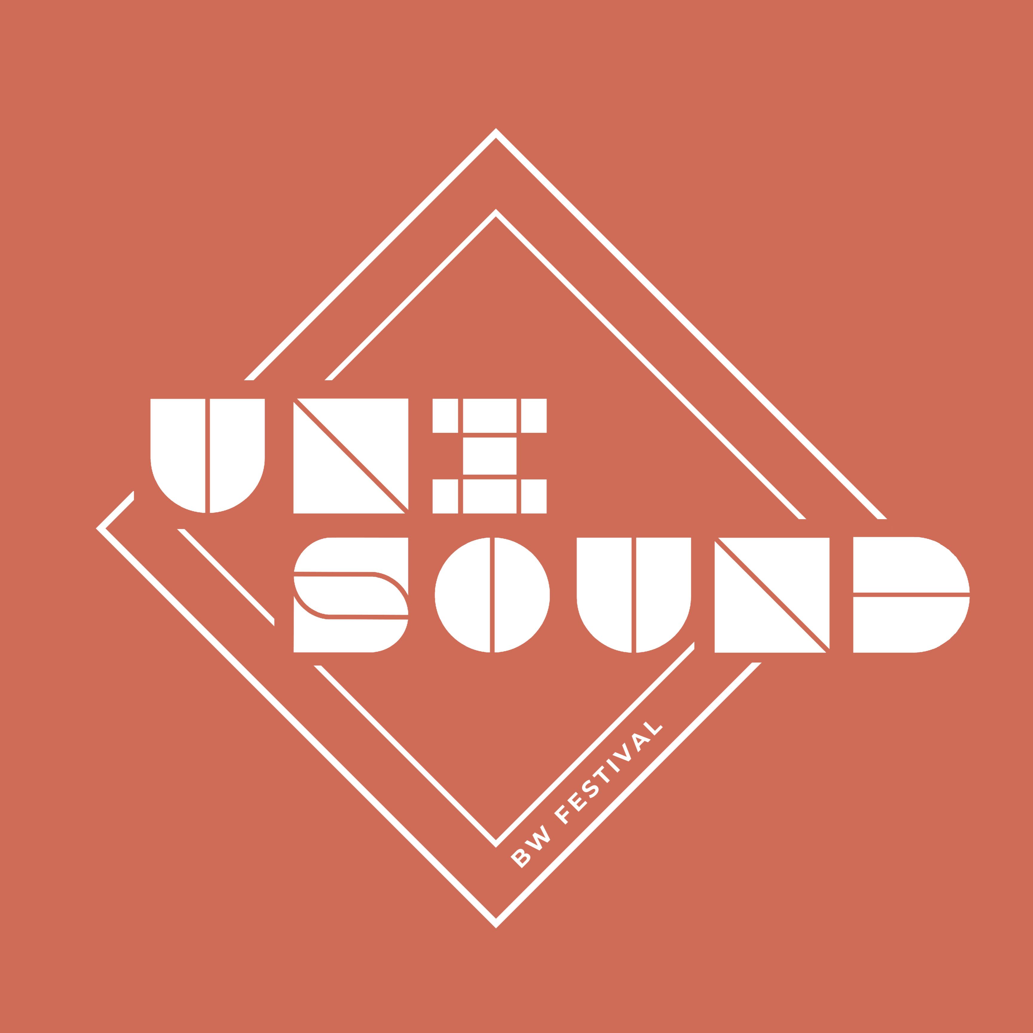 """Trouver un.e """"Unisound BW Festival - Deviens organisateur!"""""""