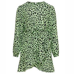 Groen geprinte jurk Solveig