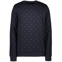 Grijze sweater Gryss