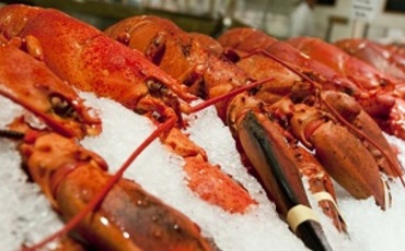 Site lobsters 760x390