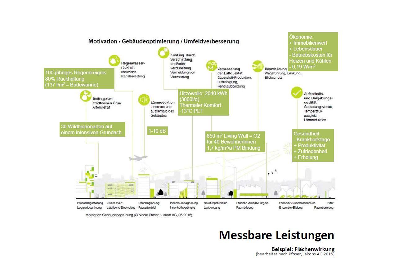 Infografik Bauwerksbegrünung