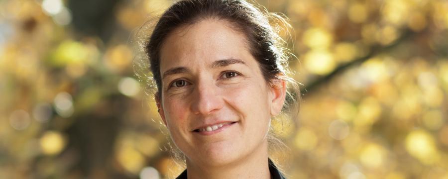 Christine Horner BIm a3bau