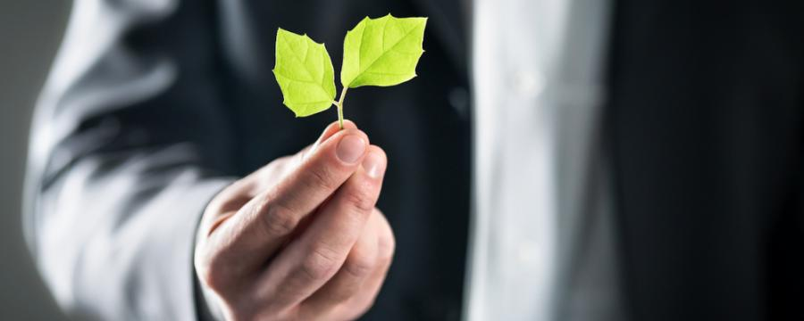 Klimaschutzpolitik Feigenblatt a3bau