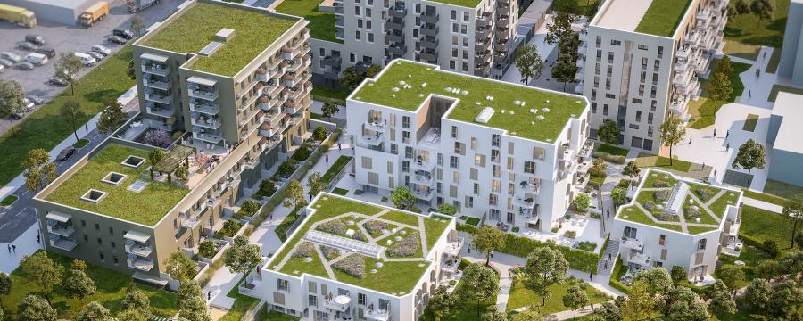 Wohnhäuser aus der Vogelperspektive