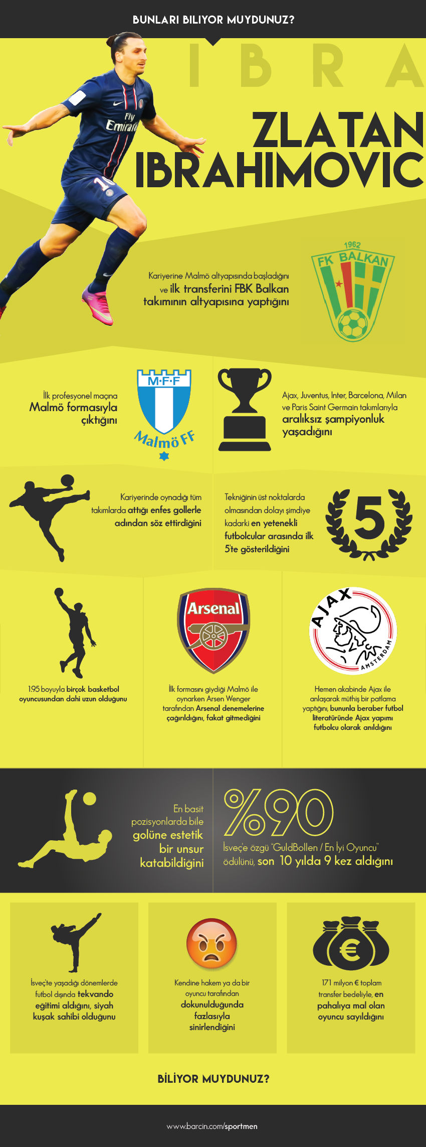 ibrahimovic-infografik