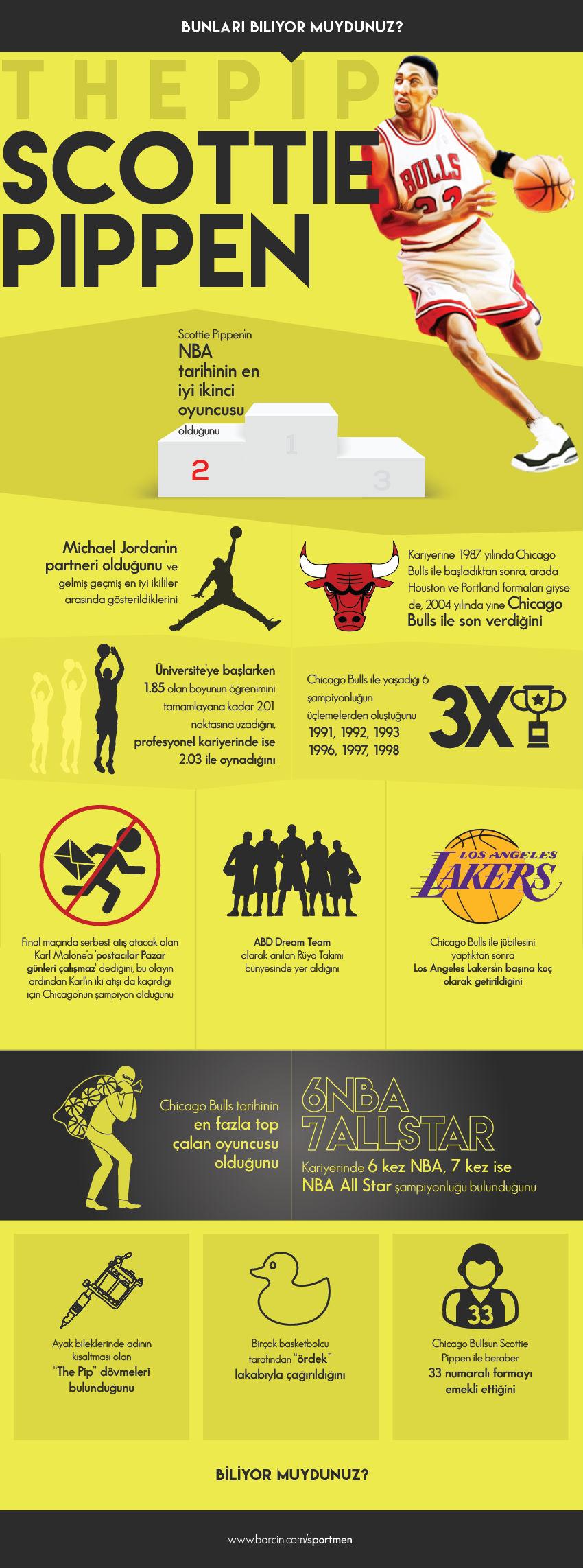 scottie-pippen-infografik