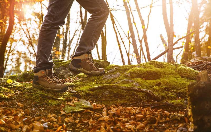 trekking-botu