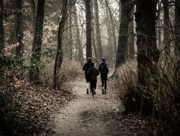 kış yürüyüşü