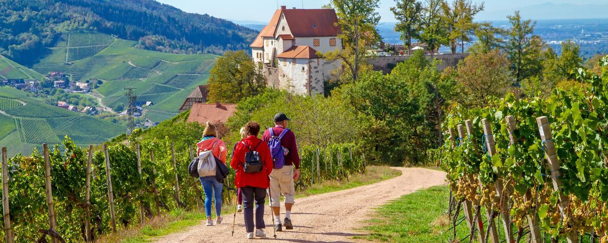 Tourismus in Baden-Württemberg im Corona-Jahr um 36 Prozent zurückgegangen.