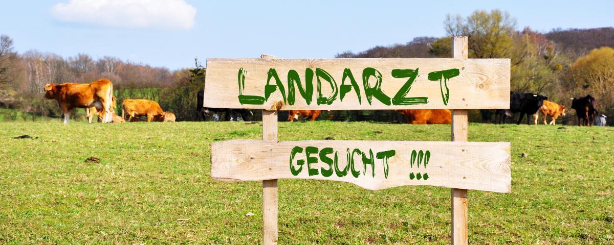 Ein neues Konzept soll den Landarzt zurück ins Dorf bringen.