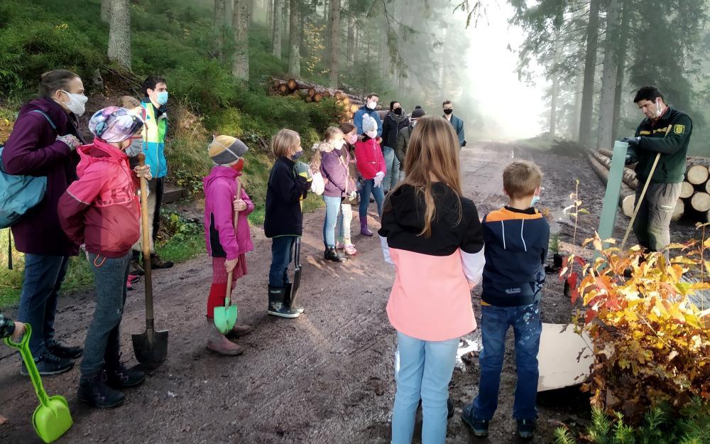"""In Tennenbronn werden für die Aktion """"1.000 Bäume für 1.000 Kommunen"""" 375 Bäume gepflanzt."""