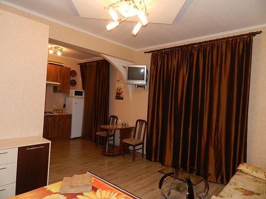 Однокомнатная квартирапосуточно в Запорожье, Орджоникидзевский район, пр-т Соборный, 169
