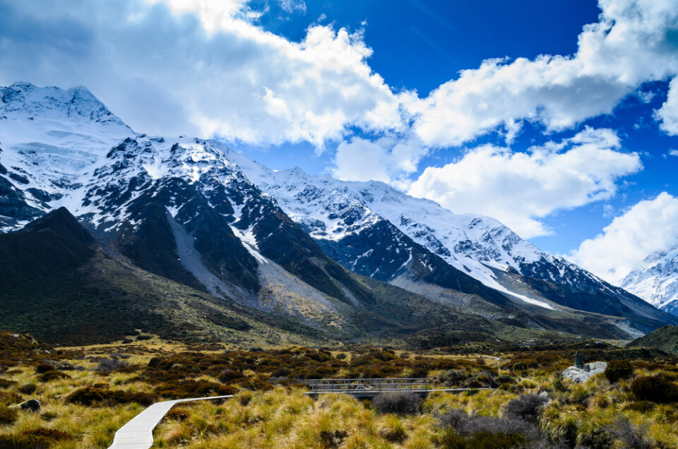 Yeni Zelanda Yaşam